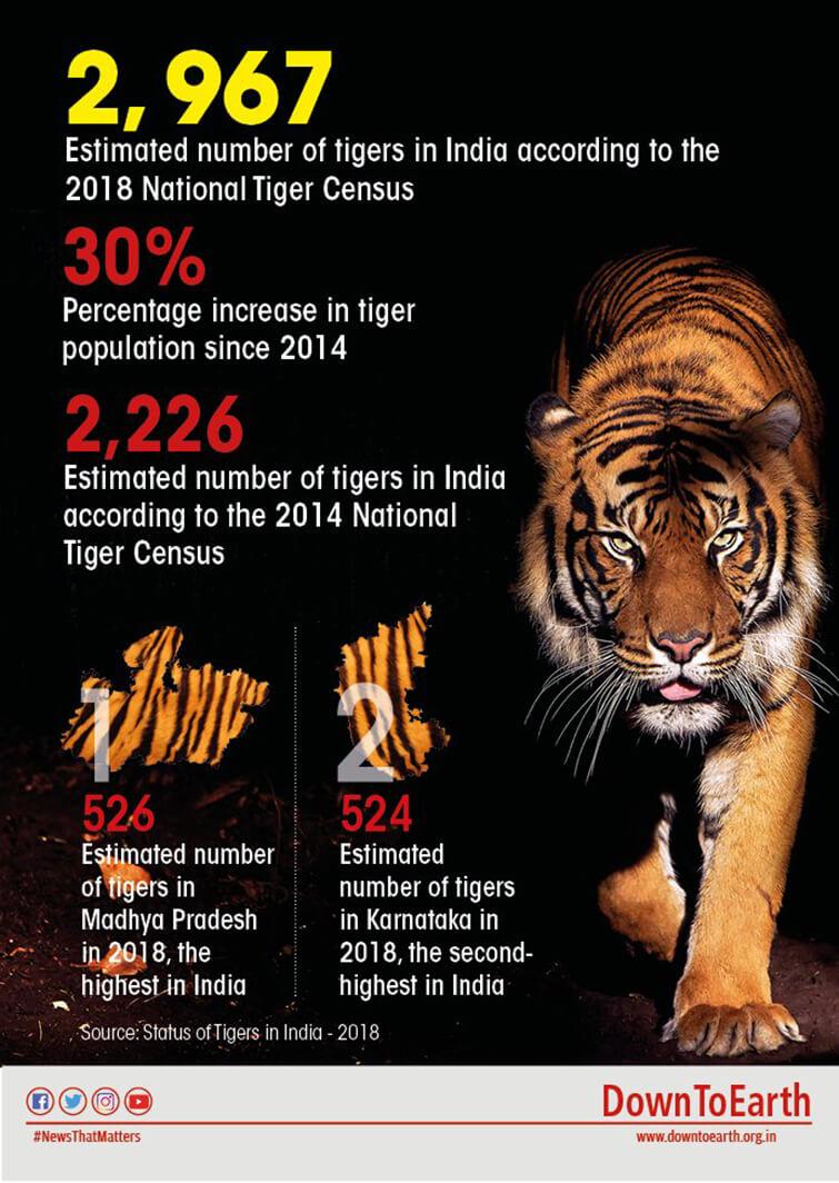 tiger-cencus-2019-1