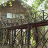 tree house hideaway resort, bandhavgarh