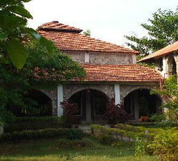 mogli jungle resort bandhavgarh